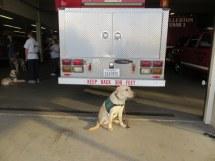 Kelton at the Fullerton Fire Station