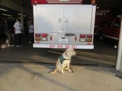 Kelton at the Fullerton Fire Station