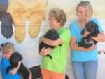 Briana, Bella and Buckley are siblings