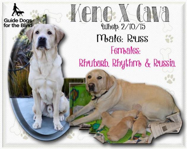 Keno and Cava