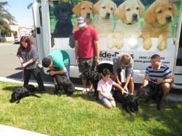 Puppy Truck 6-15 (35)