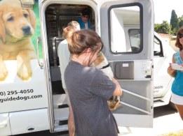 Puppy Truck 6-15 (40)