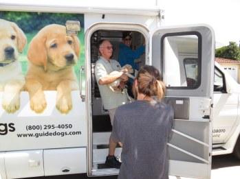 Puppy Truck 6-15 (44)
