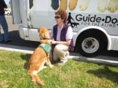 Puppy Truck 6-15 (55)
