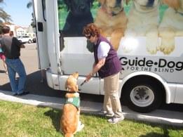 Puppy Truck 6-15 (56)