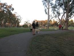 Tri-Cities-Park-natasha-kent-buckley (12)
