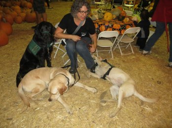 Pumpkin Patch 2015 (66)