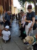 GDB Puppies in Training Travel Day 2016-007