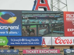 On the jumbo-tron