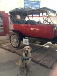 Brian in Yuma