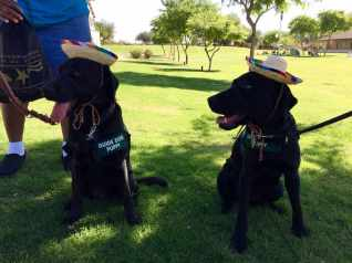 Siblings Fisher and Faith meet at Yuma Fun Day