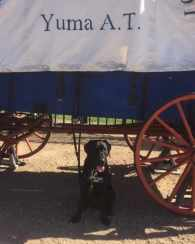 Rancher in Yuma for Fun Day