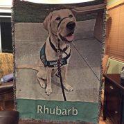 rhubarb-graduation-8